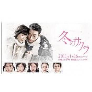 冬のサクラ DVD-BOX