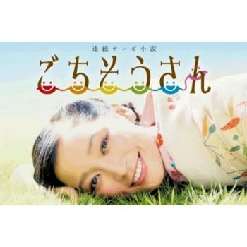 連続テレビ小説 ごちそうさん 完全版 DVD-BOX 前篇+後篇 全25週 全150回