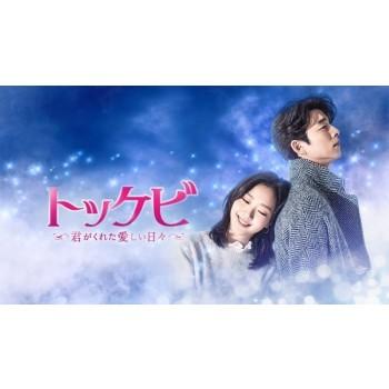 トッケビ~君がくれた愛しい日々~ DVD-BOX1+2 全16話